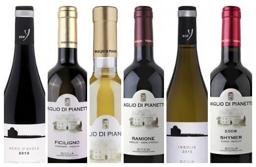 Дегустация красных и белых вин Сицилии